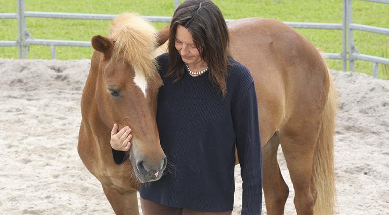 mensch gegen pferd